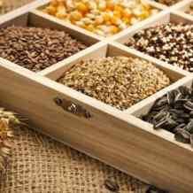 Сорт или гибрид – что нужно знать при выборе семян