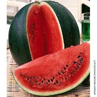 Семена арбуза Сахарный Малыш (весовые)