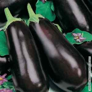 Баклажан Фиолетовое чудо 0,3 г. ТМ Кращий Урожай