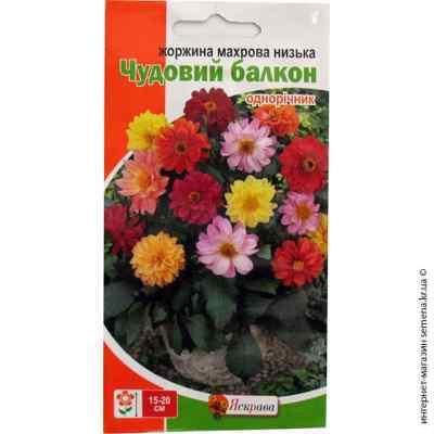 Семена георгины махровой низкорослой Чудесный балкон 0.3 г.