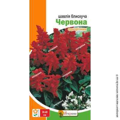 Семена шалфея блестящего Красный 0.2 г.