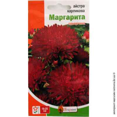 Семена астры карликовой Маргарита 0.3 г.