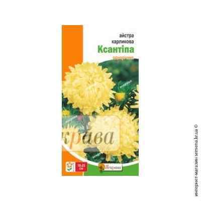 Семена астры карликовой Ксантипа 0.3 г.