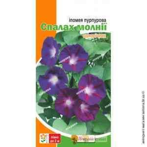 Семена ипомеи пурпурной Вспышка молнии 1 г.