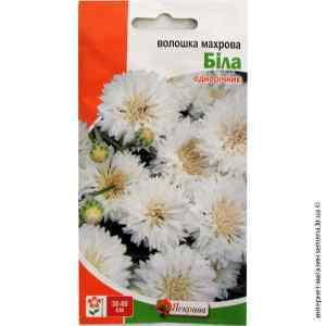 Семена василька махрового Белый 0.5 г.