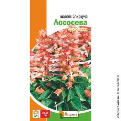 Семена шалфея блестящего Лососевый 0.2 г.