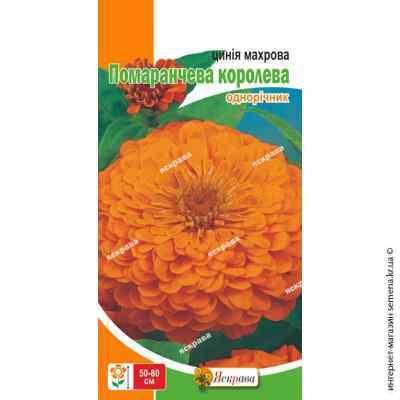 Семена циннии махровой Оранжевая королева 0.5 г.
