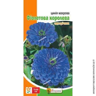 Семена цинии махровой Фиолетовая королева 0.5 г.