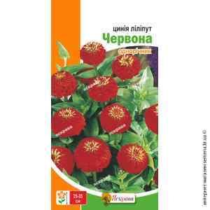 Семена цинии лилипут Красная 0.5 г.