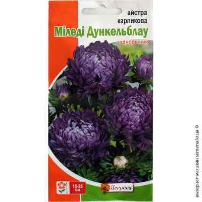 Семена астры карликовой Миледи Дункельблау 0.3 г.