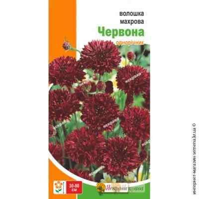 Василек Махровый Красный 0,5 г.