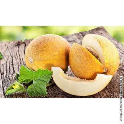 Семена дыни Алушта (весовые)
