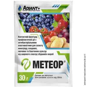 Метеор 30 г.