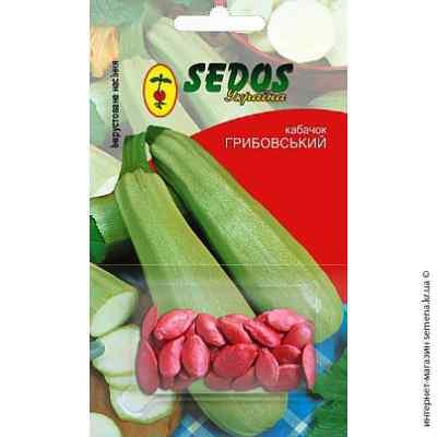 Инкрустированные семена кабачков Грибовский-37