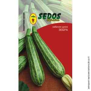 Инкрустированные семена кабачков-цукини Зебра
