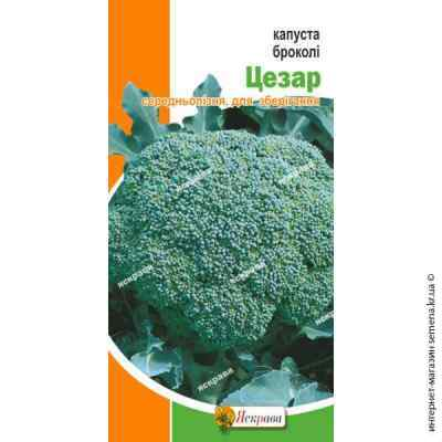 Семена капусты Брокколи Цезарь 0.5 г. (поздняя)