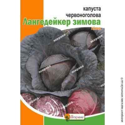 Семена капусты краснокочанной Лангедейкер 5 г.