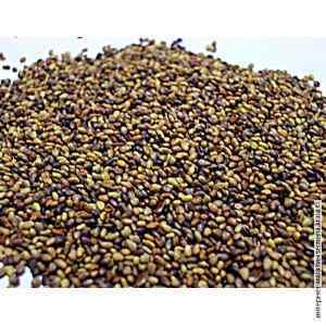 Семена клевера (25 кг)