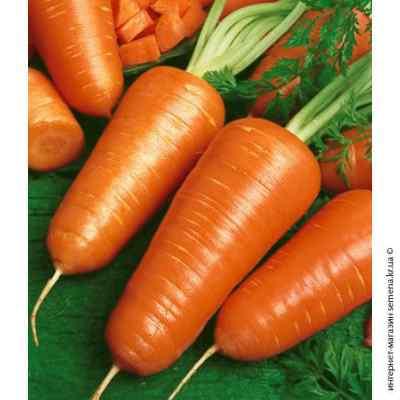 Семена моркви Шантане Роял Польша (весовые)
