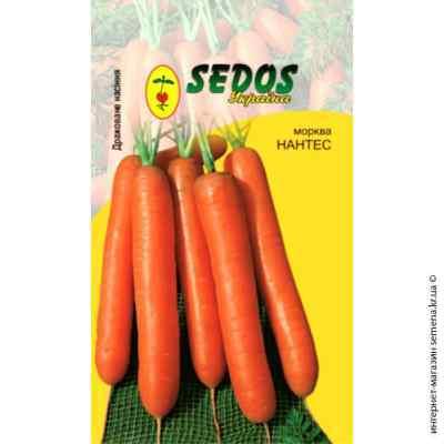 Дражированные семена моркови Нантес