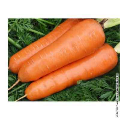 Морковь Витаминная (весовая)