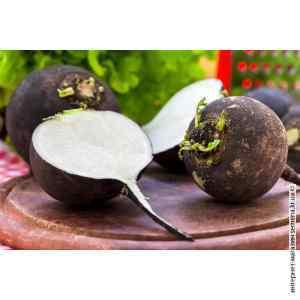 Семена редьки Черная зимняя (весовая)