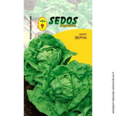 Инкрустированные семена салата Верна