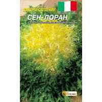 Семена цикория салатаного кучерявого Сен-лоран 1 г.