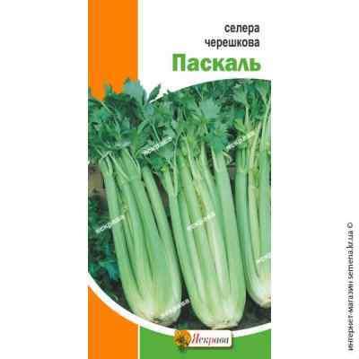 Семена сельдерея черешкового Паскаль 0.5 г.