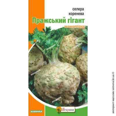 Семена сельдерея корневого Пражский гигант 0.2 г.
