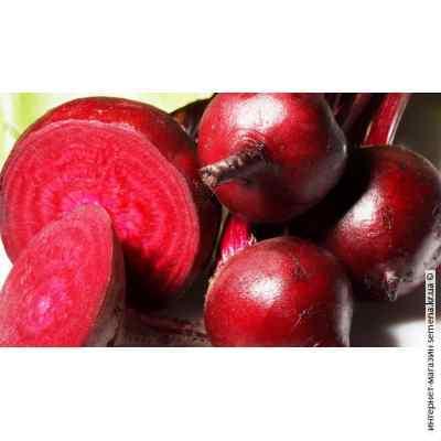 Семена свеклы столовой Красный шар (весовая) (20кг/меш)