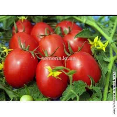 Семена томатов Де Барао Королевский 0,1 г.