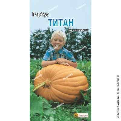 Тыква Титан 3 г.