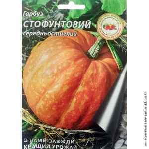 Семена тыквы Стофунтовка 10 г.