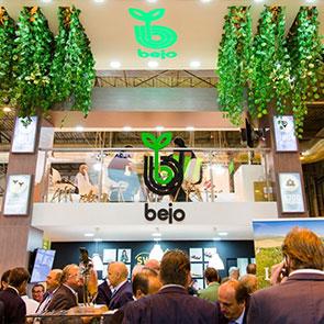 Компания из Нидерландов Бейо (Bejo)
