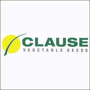 Клаус (Clause)