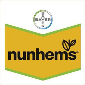 Нунемс (Nunhems Zaden)