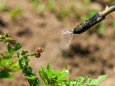 купить инсектициды оптом